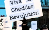 chaddar revolution