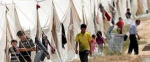 syrian refugee-2