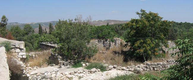 שרידי הכפר בירעם, 2010 (צילום: Ori) Birem066