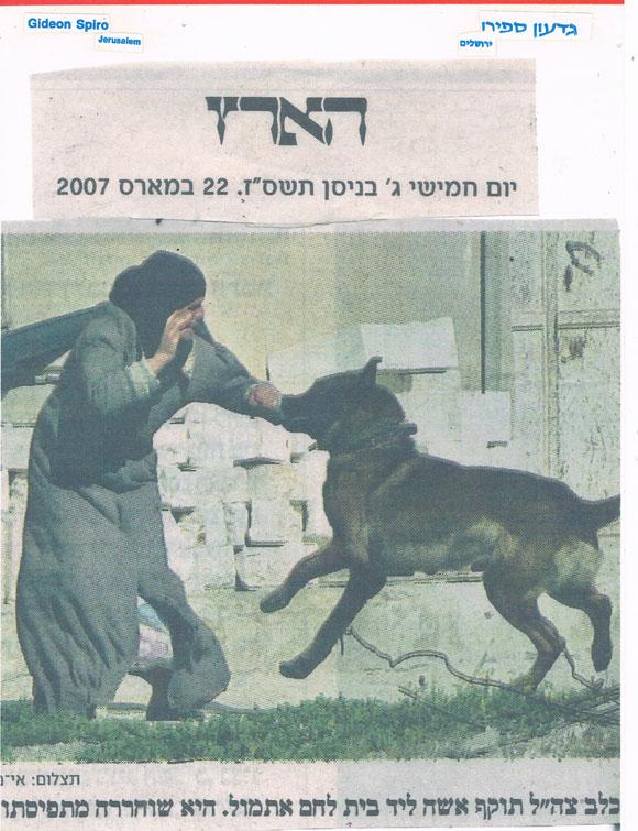 """כלב צה""""ל תוקף אישה פלסטינית הארץ klavim"""