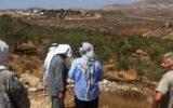 בעלי קרקעות פלסטינים מביטים לעבר אדמתם שנשדדה (צילום: יש דין) כיבוש התנחלות מתנחלים palestineland